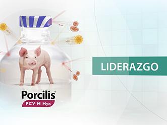 Vídeo Producto Porcilis