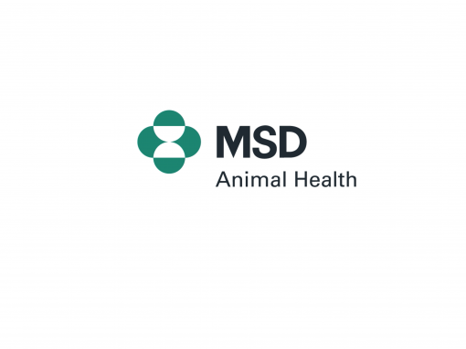 MSD Stand 2018